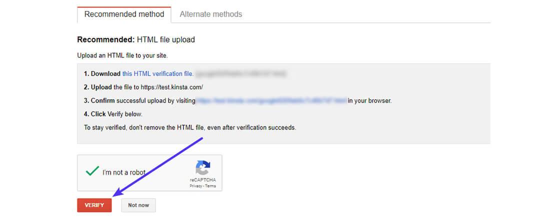 search console verify website